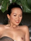 Zhang Ziyi Nude Fakes - 006